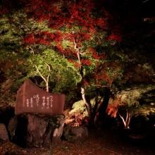 月の石もみじ公園 02