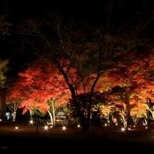 月の石もみじ公園 03