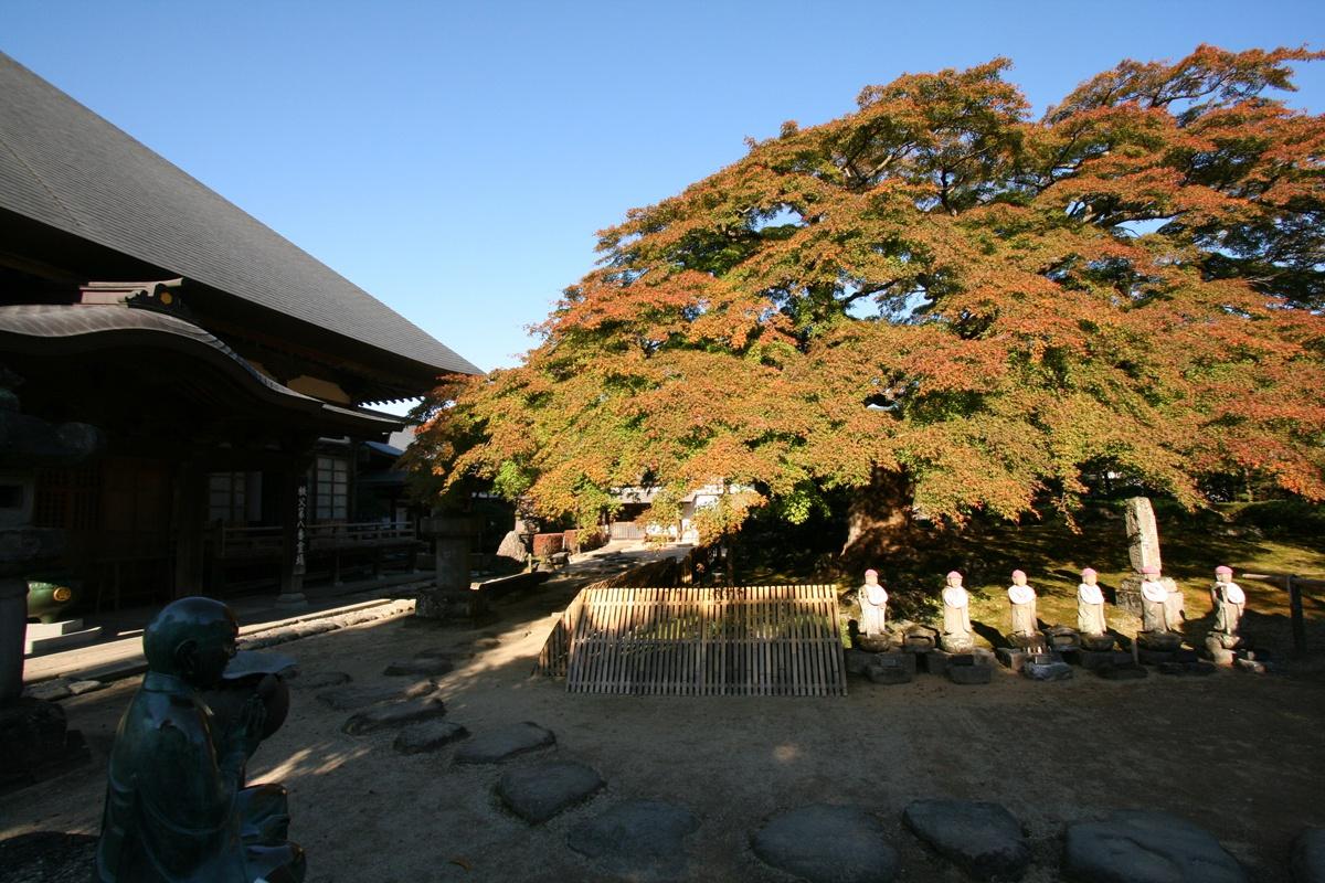 札所八番・西善寺(横瀬町)