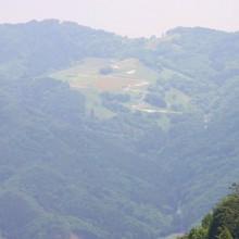 美の山山頂から望む高原牧場ポピー