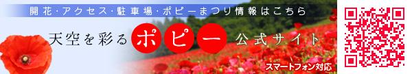 天空を彩るポピー公式サイト