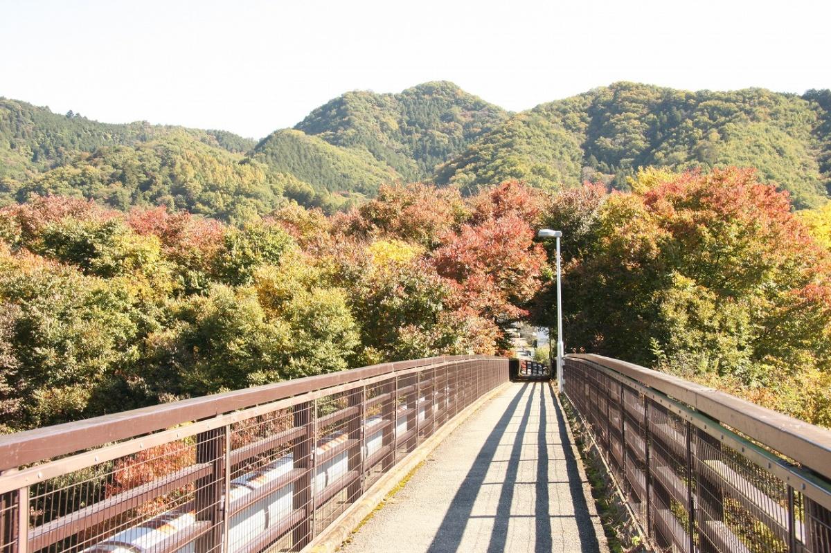 金石水管橋(長瀞町)   WebGuide 秩父 トピックス(花・紅葉 ...