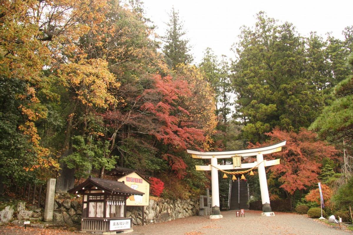 寶登山神社 (長瀞町)   WebGuide 秩父 トピックス(花・紅葉 ...