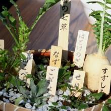 七草粥まつり 04