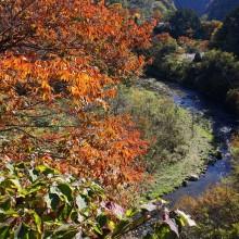 奥秩父浦山ダム周辺紅葉