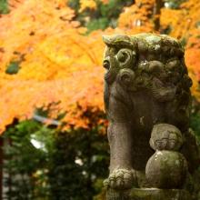 寶登山神社_06