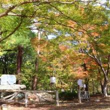 長瀞紅葉 月の石もみじ公園
