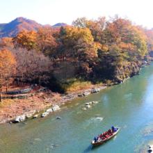 長瀞紅葉 金石水管橋の画像