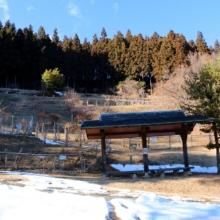 あずまや山福寿草園