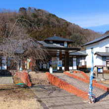 道の駅「龍勢会館」 福寿草