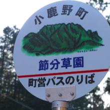 小鹿野町両神 節分草園の画像