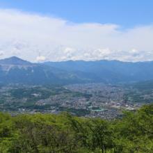 美の山公園アジサイ