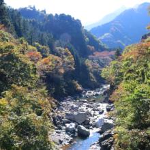 大血川渓谷の画像