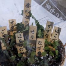 七草粥まつりの画像