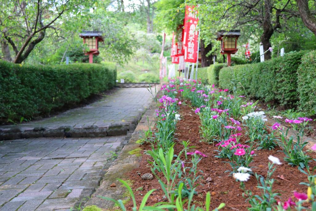 長瀞七草寺撫子の画像