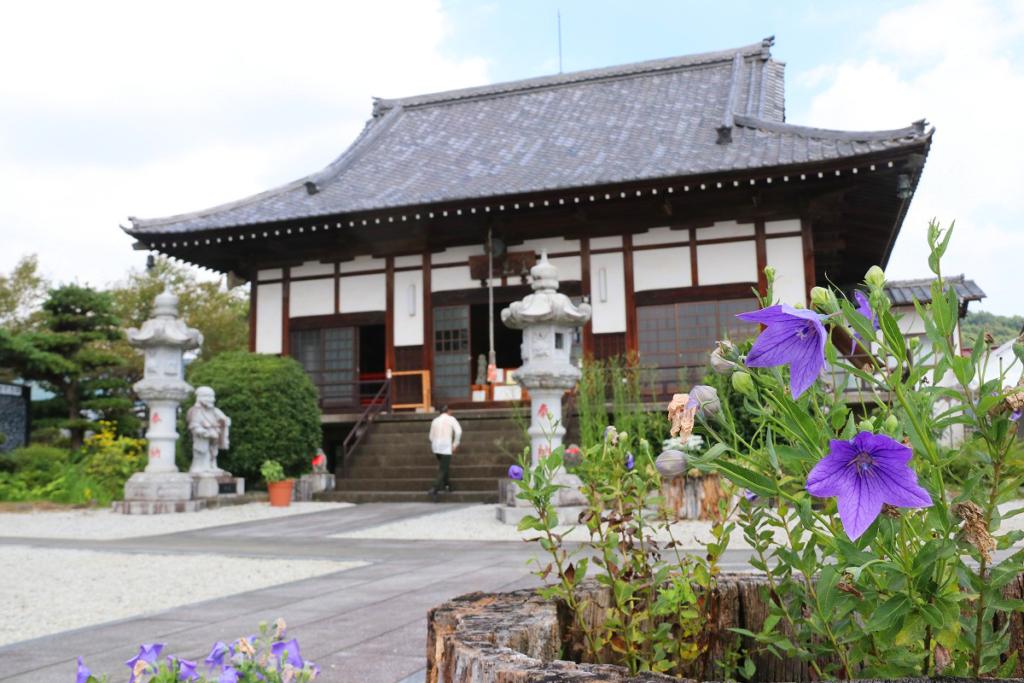 長瀞七草寺桔梗の画像