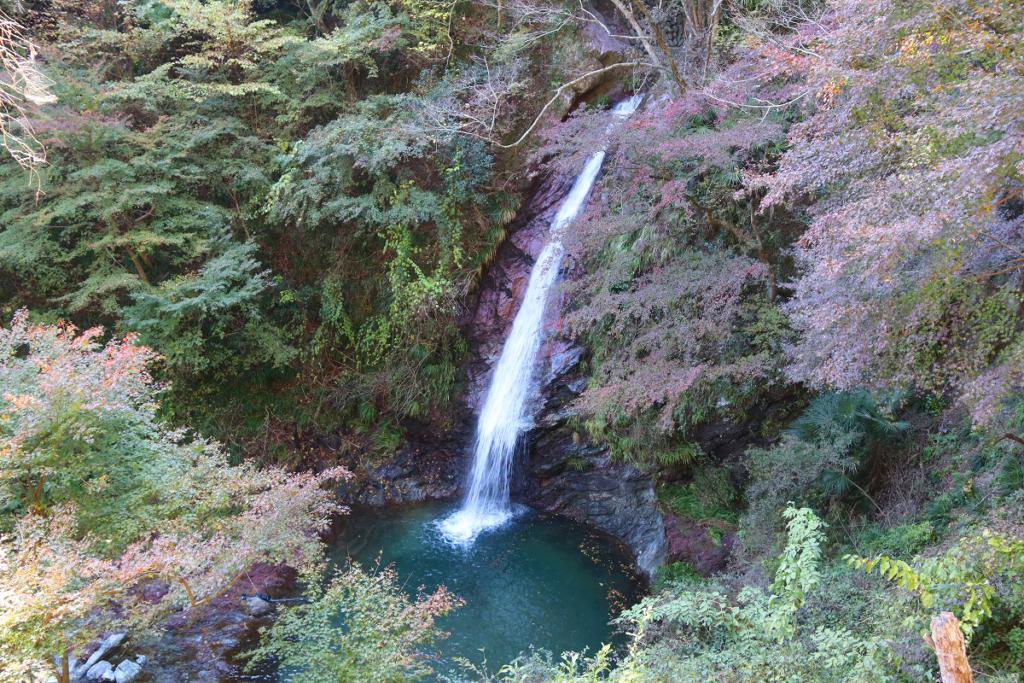 秩父華厳の滝の画像