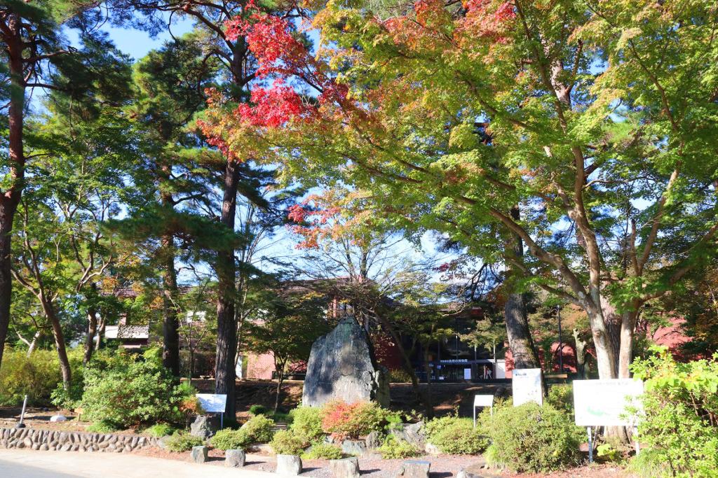長瀞自然の博物館紅葉の画像