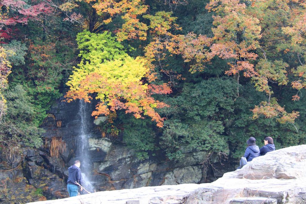 岩畳周辺の紅葉画像
