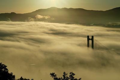 秩父雲海の画像