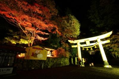 寶登山神社ライトアップ