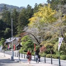 寶登山神社紅葉01