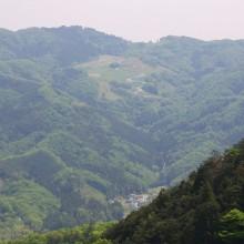 美の山から望むポピー畑