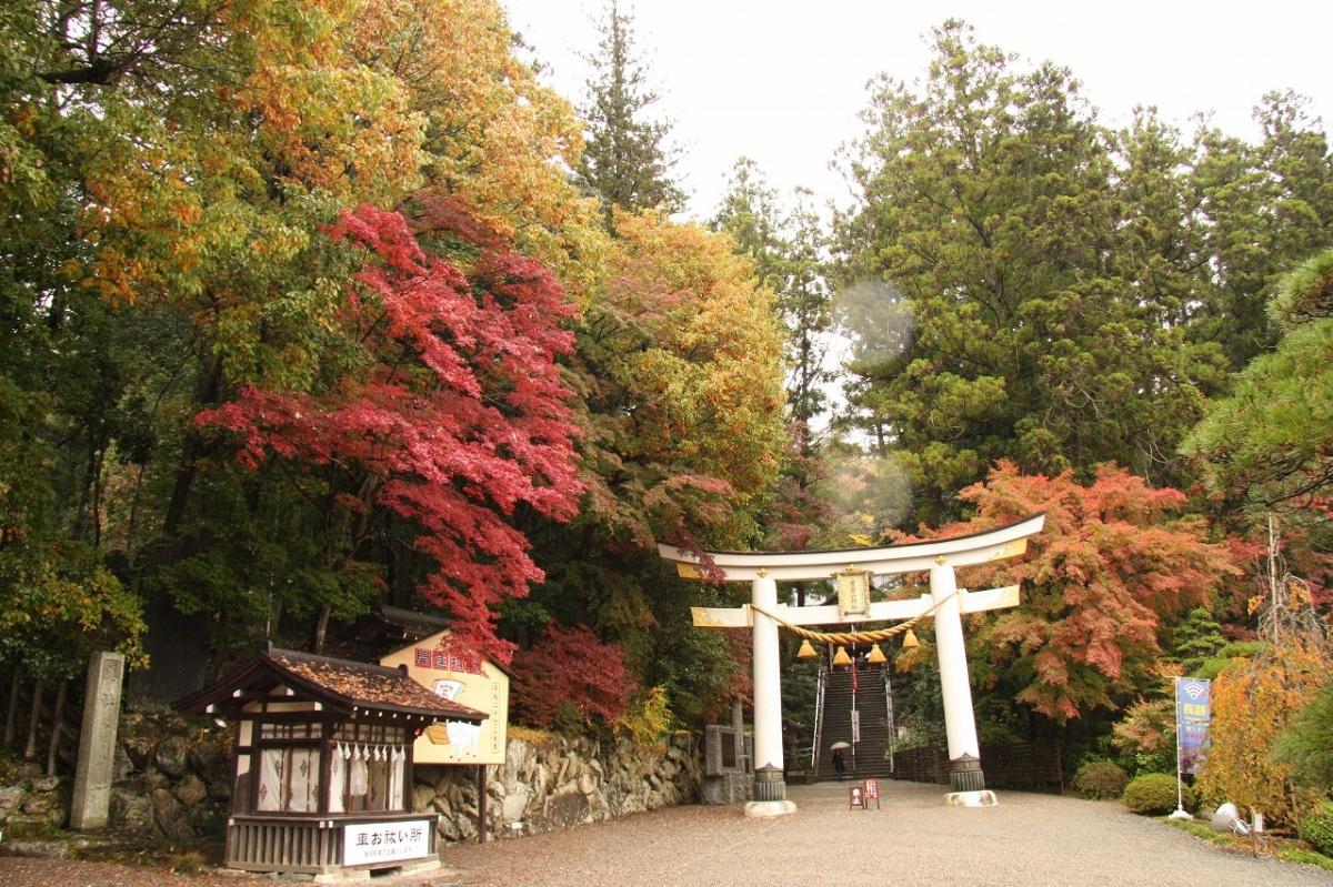 寶登山神社(長瀞町)   WebGuide 秩父 トピックス(花・紅葉 ...