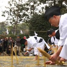 椋神社御田植祭