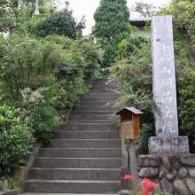 秋の七草寺_萩