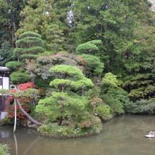 寶登山神社紅葉