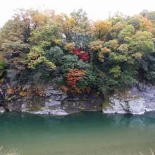 長瀞岩畳周辺紅葉