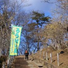 宝登山・東ロウバイ園