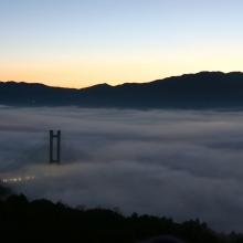 秩父ミューズパーク雲海の画像