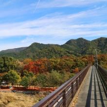 長瀞紅葉 金石水管橋