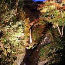 秩父華厳の滝ライトアップの画像