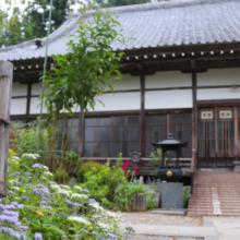 長瀞秋の七草藤袴の画像