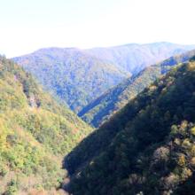 奥秩父紅葉 滝川渓谷の画像