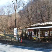 小鹿野町節分草園の画像