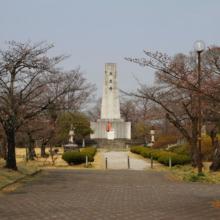 羊山公園桜の画像