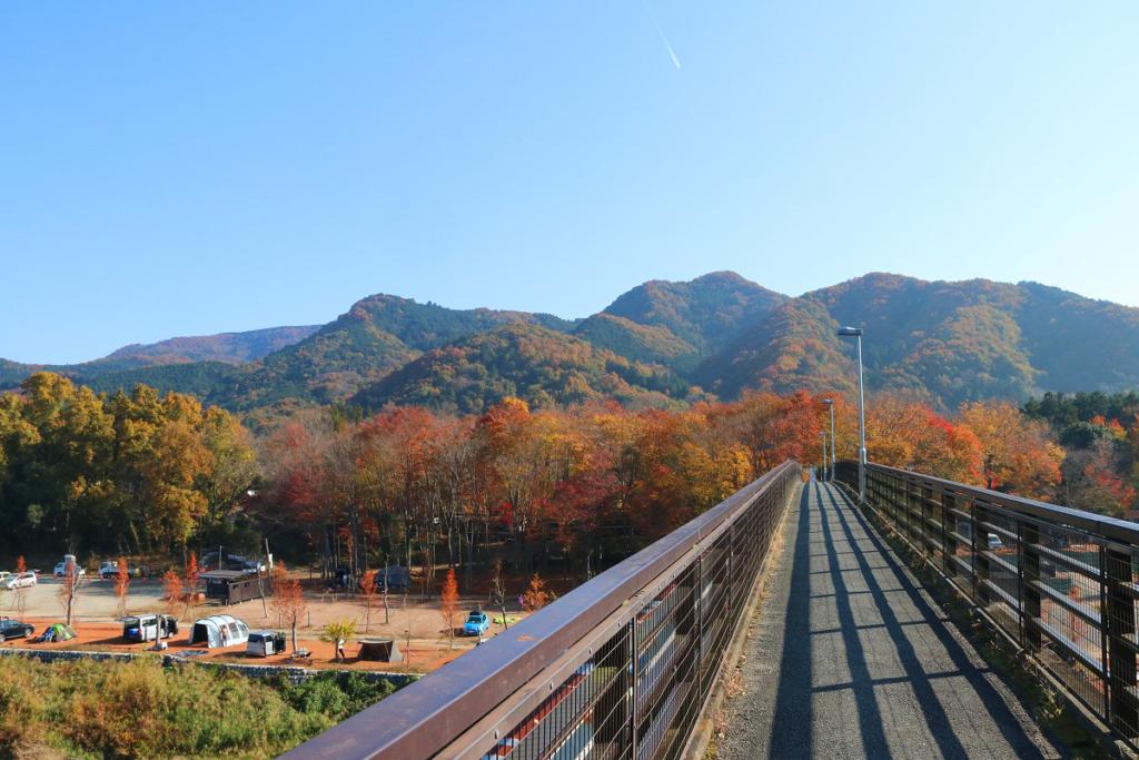 金石水管橋紅葉の画像