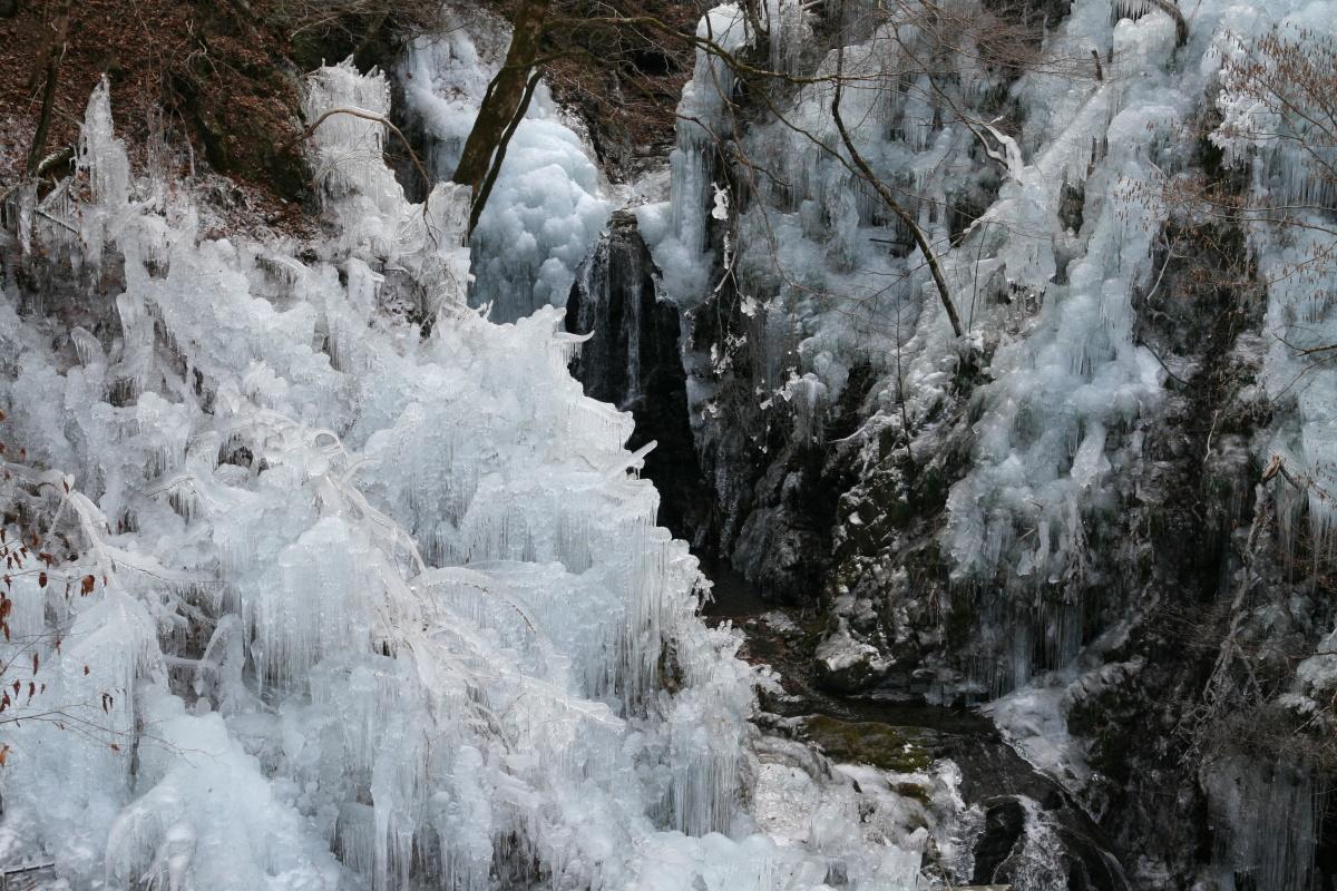 尾の内の氷柱