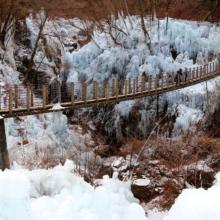 尾ノ内渓谷氷柱