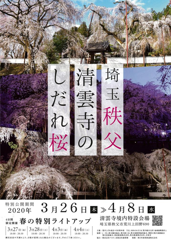 清雲寺のしだれ桜ライトアップ2020年